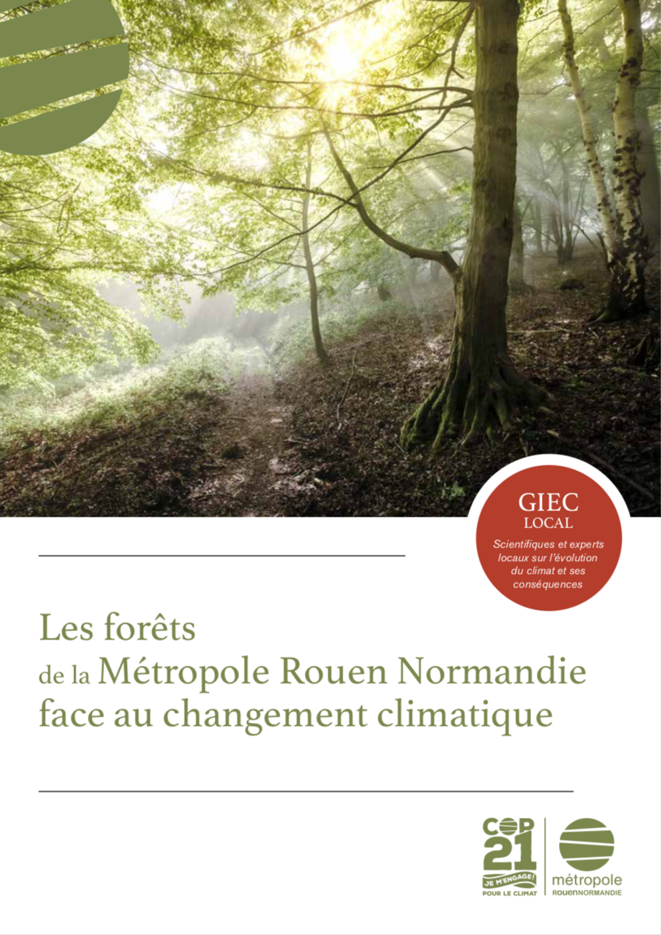 couverture forets